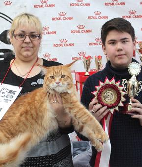 1-2 декабря г. Новосибирск Международная выставка кошек «CAT-Expo 2018»